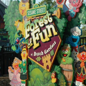 Forest of Fun - 2014
