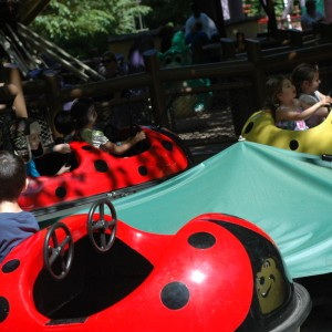 Land of the Dragons - Bug-A-Dug - Kiddie Ride - 2014